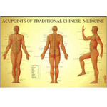 Acupoints Of Traditional Chinese Medicine - Male.jpg