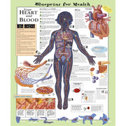 Blueprint for Health Your Heart and Blood Chart.jpg