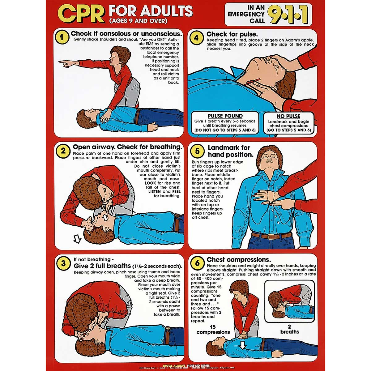 Cpr for adults chart 18 x 24