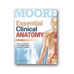 Essential-Clinical-Anatomy-5th-Edition600.jpg