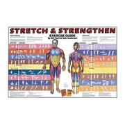Stretch & Strengthen Chart.jpg